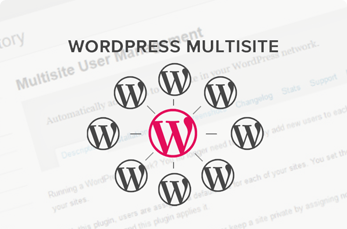 Guide To WordPress Multisite