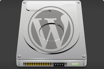 Installing WordPress On A Local Drive